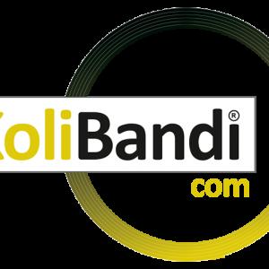 Koli-Bandi-Favicon